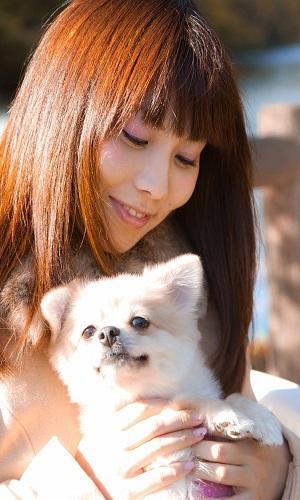 女性と犬 ポメラニアン