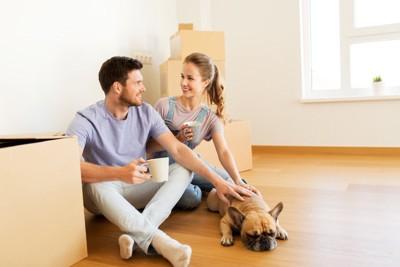 引っ越しの準備をする夫婦と元気のない犬