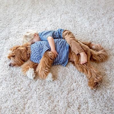 おそろいのブルーの洋服を着た犬と子供