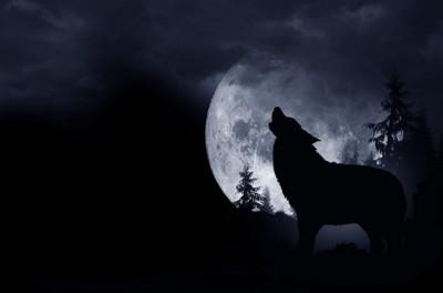 月に吠える狼
