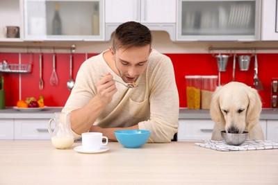 犬と食事をする男性