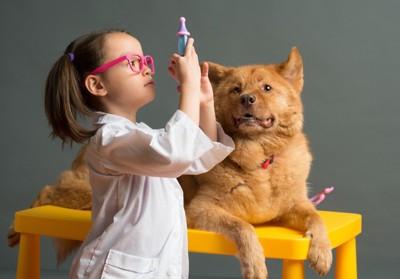 おもちゃの注射器を持つ女の子と犬