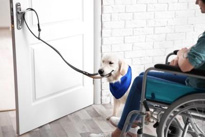 ドアを開ける補助犬