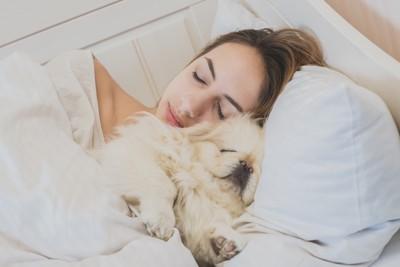 一緒に寝ている女性と犬