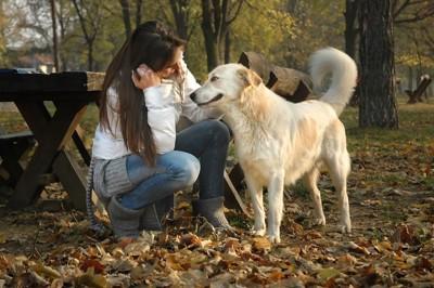 白い犬の体を撫でる女性