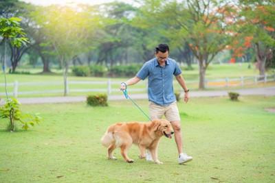 散歩する男性とゴールデンレトリーバー
