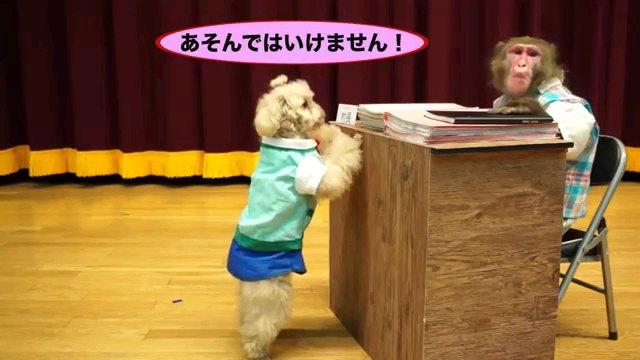 あそんではいけません!~字幕