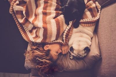 ベッドで眠る女性とパグと猫