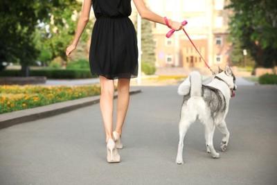 犬の散歩をするオシャレな女性