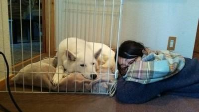 寄りそって寝ている犬と人