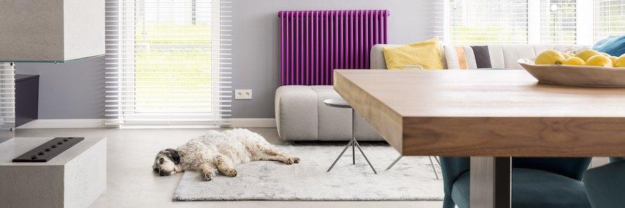 四角いテーブルが置かれた部屋でくつろぐ犬