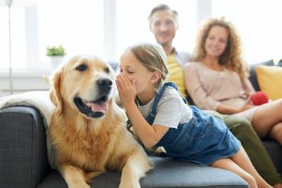 ソファーで家族と一緒にくつろぐ犬
