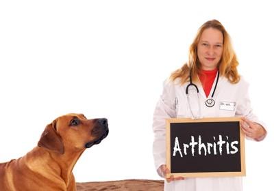犬と関節炎と書いた黒板を持つ獣医師