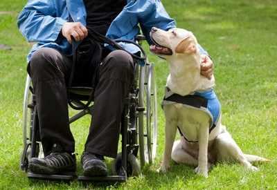 車椅子の男性の横に座る犬