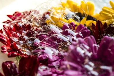 花の香りイメージ