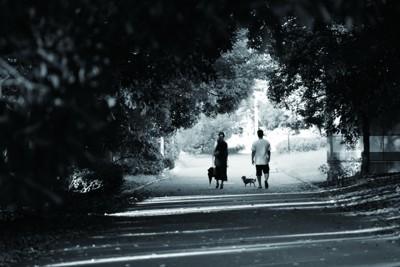 白黒画像 男性が犬を連れて歩いている 女性は横で傘を持ちながら歩いている