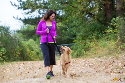 目を合わせて散歩する犬と女性