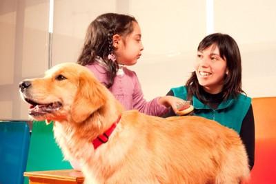 セッション中の子供と犬とハンドラー
