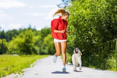 ジョキングをしている犬と人