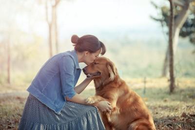 女性に額にキスをされて目を閉じる犬