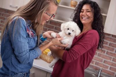 子犬を抱く女性と触る女性