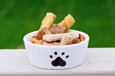 一般的な犬の食器