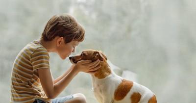 キスをしようとしている飼い主と犬