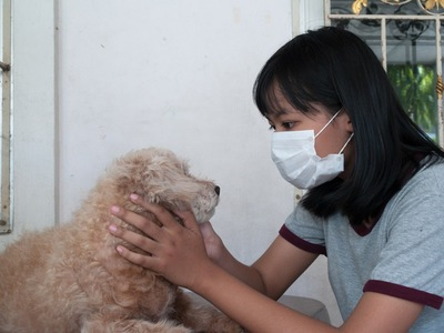 マスクをして犬アレルギーを緩和させる少女
