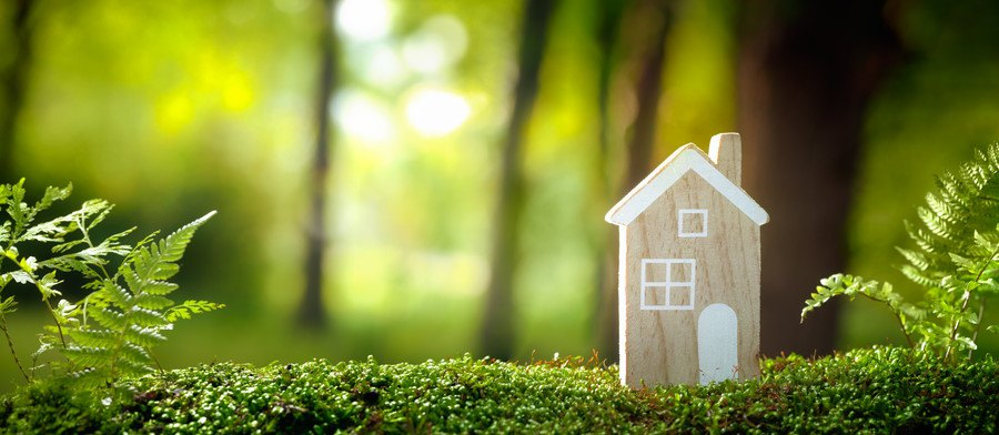 家の形の木