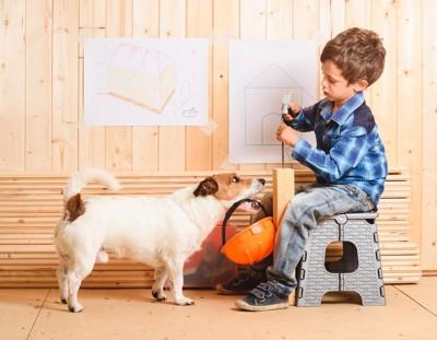 DIY中の少年と犬