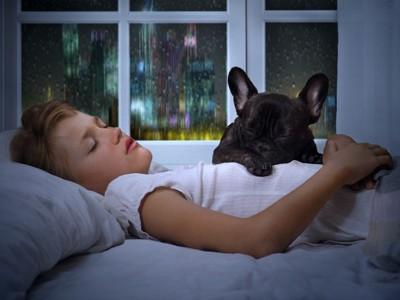 飼い主と一緒に寝ている犬
