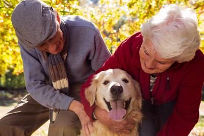 2人の高齢者と犬