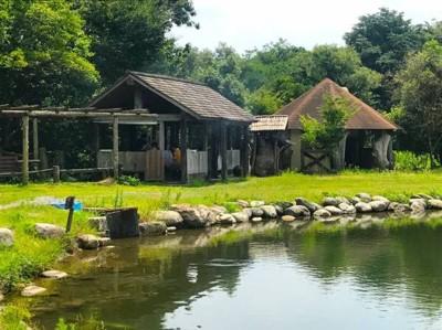 池のほとりの小屋