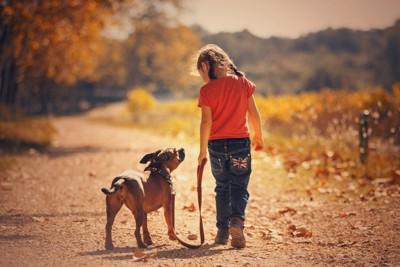 小さな女の子と犬の後ろ姿