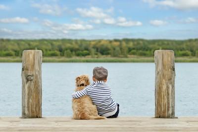 並んで座る仲良しな犬と子供の後ろ姿