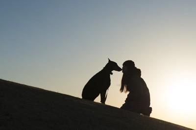 犬と飼い主のシルエット