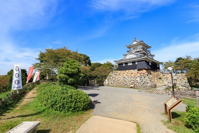 青空と浜松城