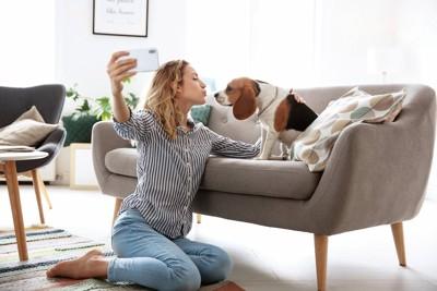 ソファーの上の飼い犬と写真を撮る女性