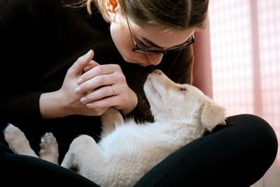 犬にキスしようとする女性