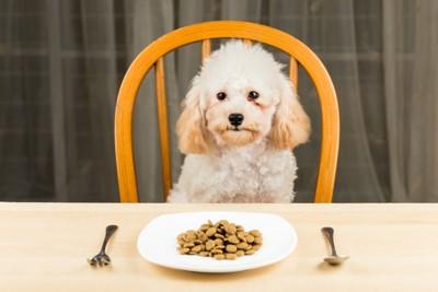 テーブルに付く犬