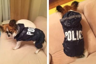policeレインコート