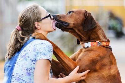 眼鏡の女性にキスをする犬