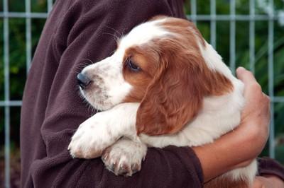 犬を抱きしめる女性