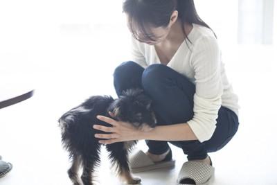 しゃがんで子犬を撫でる女性