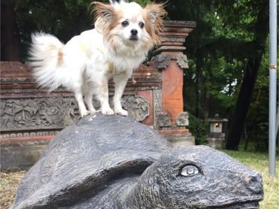 犬と亀の像