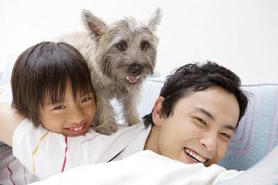 親子の上に立つ犬