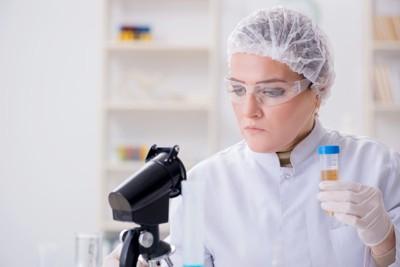 顕微鏡で検査している人