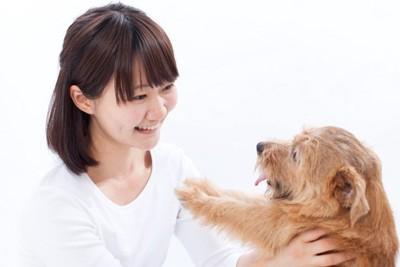 犬と白い服の女性