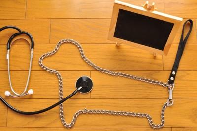 犬の形をしたチェーンと聴診器