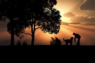 人間と犬のシルエット